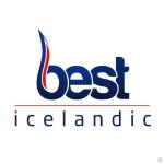 Logo Best Icelandic